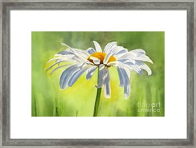 Single White Daisy Blossom Framed Print by Sharon Freeman