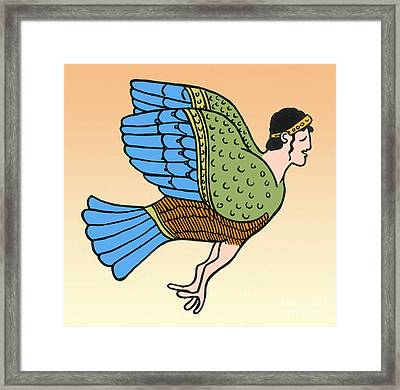Siren Framed Print by Photo Researchers