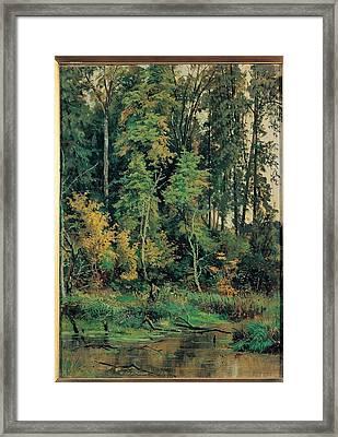 Siskin Ivan Ivanovic, Towards Framed Print by Everett