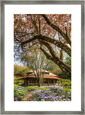 Sitting Pretty Framed Print by Debra and Dave Vanderlaan