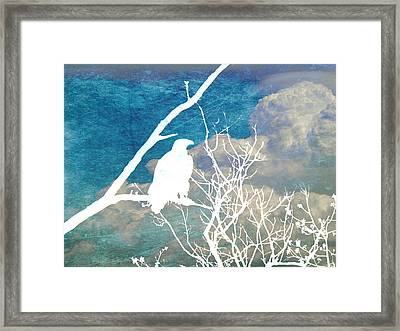 Sitting Watching Waiting Framed Print by Candace Fowler