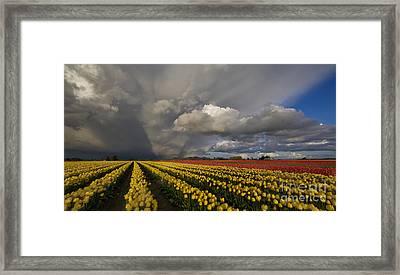 Skagit Valley Storm Framed Print by Mike Reid