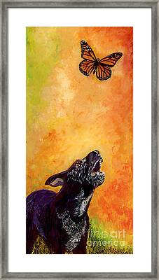 Skippy And The Flying Flower. Framed Print by Anna Skaradzinska
