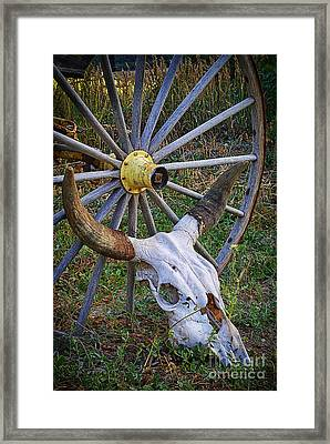 Skull Among The Living Framed Print by Priscilla Burgers