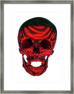 Skull Warning Framed Print by Daniel Sambraus