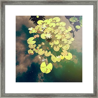 Sky Dance Framed Print by Joy StClaire