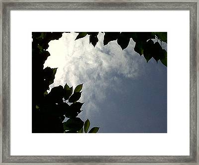 Sky Is The Limit Framed Print by Andreea Alecu