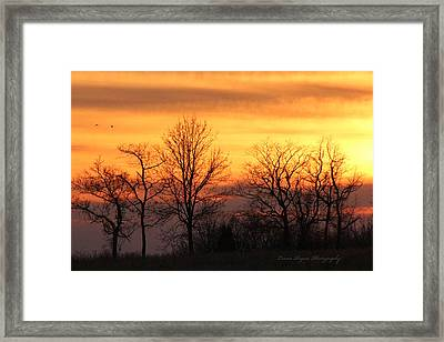 Sky On Fire Framed Print by Lorna Rogers Photography