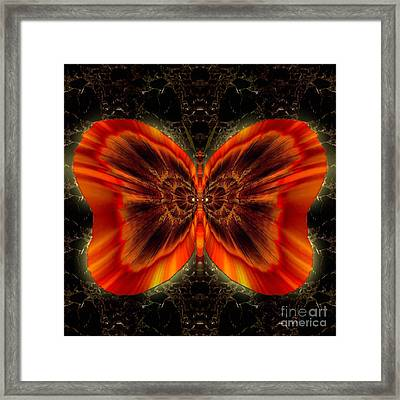 Skylark Copperspirit Framed Print by Raymel Garcia