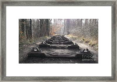 Sleepers In The Woods Framed Print by John Williams