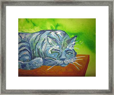 Sleeping Blue Cat Framed Print by Cherie Sexsmith