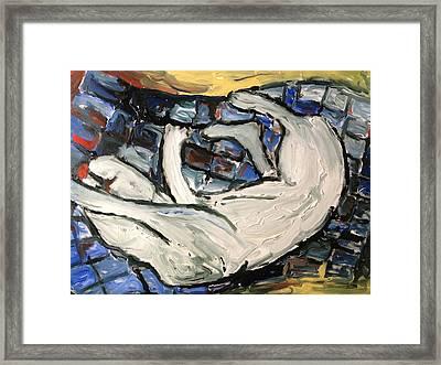 Sleeping Cat Framed Print by Patrick Humphreys
