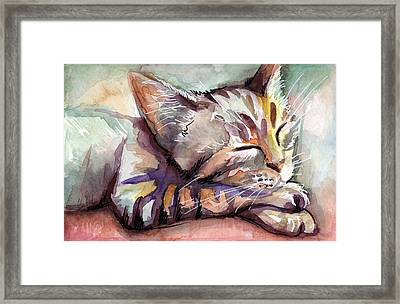 Sleeping Kitten Framed Print by Olga Shvartsur