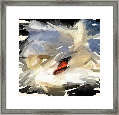 Sleeping Swan Framed Print by Yury Malkov