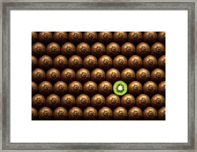 Sliced Kiwi Between Group Framed Print by Johan Swanepoel