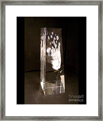 Slow Boil Crystal Sculpture 6 Framed Print by Dia T