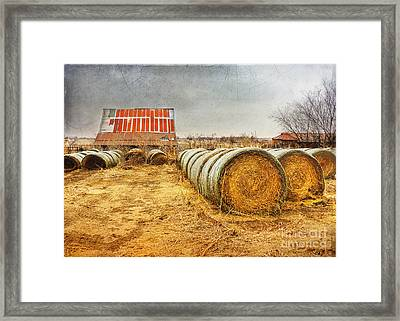 Slumbering In The Countryside Framed Print by Betty LaRue