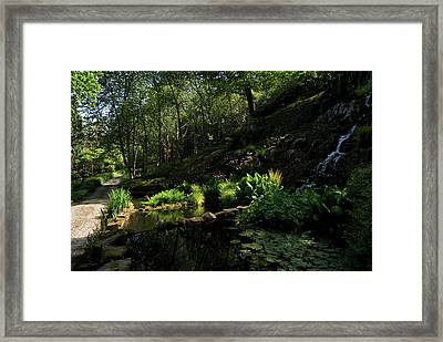 Small Water Garden Below The Waterfall Framed Print by Panoramic Images