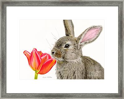 Smells Like Spring Framed Print by Sarah Batalka