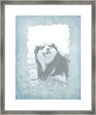 Smile Framed Print by Ann Powell