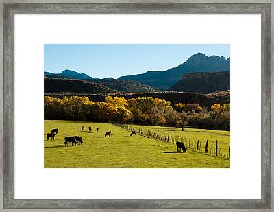 Smithsonian Butte And Two Feathers Ranch Early Fall On The Virgin River Rockville Utah Framed Print by Robert Ford