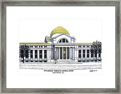 Smithsonian Museum Of Natural History Framed Print by Frederic Kohli