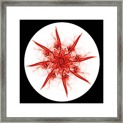 Smoke Flower 1 Framed Print by Steve Purnell