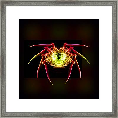 Smoke Spider 1 Framed Print by Steve Purnell