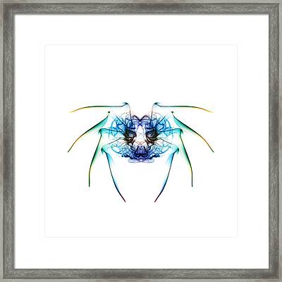 Smoke Spider 2 Framed Print by Steve Purnell