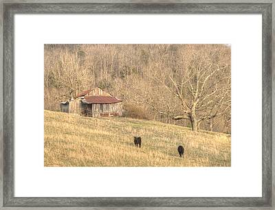 Smoky Mountain Barn 8 Framed Print by Douglas Barnett
