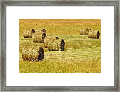 Smoky Mountain Hay Framed Print by Frozen in Time Fine Art Photography