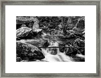 Smoky Mountain Stream 4 Bw Framed Print by Mel Steinhauer