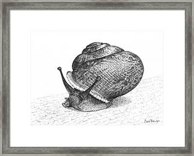 Snail Poe Framed Print by Cara Bevan
