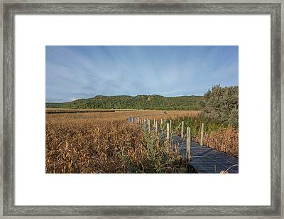Snake Path Framed Print by Shari Mattox