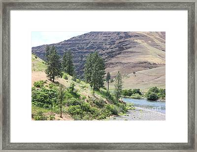 Snake River 1  Framed Print by Linda Meyer