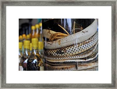 Snakes In Snake-flavoured Alcohol Bottles  Framed Print by Sami Sarkis