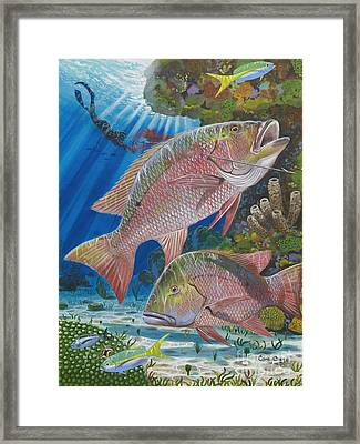 Snapper Spear Framed Print by Carey Chen