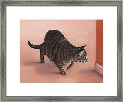 Sneaky Framed Print by Anastasiya Malakhova