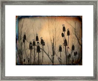 Snow Caps Framed Print by Gothicolors Donna