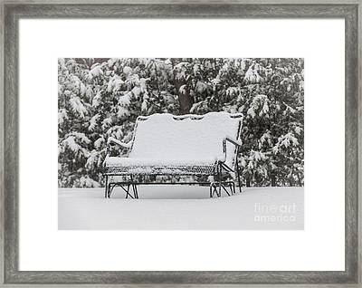 Snow Covered Bench Framed Print by Elena Elisseeva