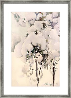 Snow-covered Pine Saplings Framed Print by Mountain Dreams