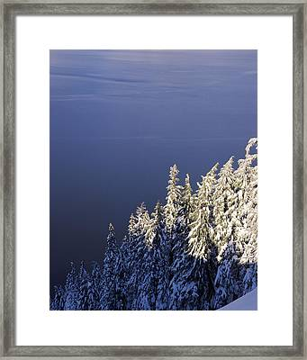 Snow Covered Trees At South Rim, Crater Framed Print by Panoramic Images