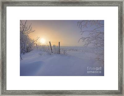 Snow Drifts And Barbed Wire Framed Print by Dan Jurak