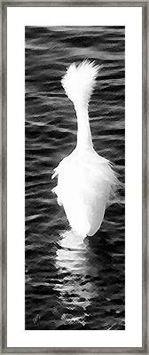 Snowy Egret - The Wonder Framed Print by Ben and Raisa Gertsberg