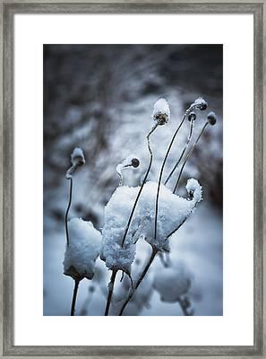 Snow Forms Framed Print by Belinda Greb