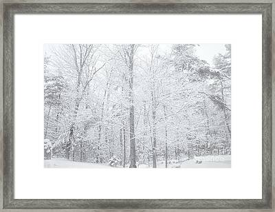 Snow Front Framed Print by Sue OConnor