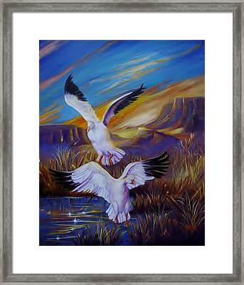 Snow Geese Framed Print by Sherry Strong