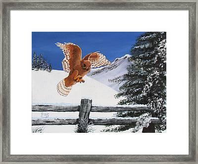 Snow Hawk Christmas Card Framed Print by Pete Souza
