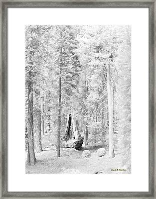 Snow Impressions Framed Print by Angela Stanton