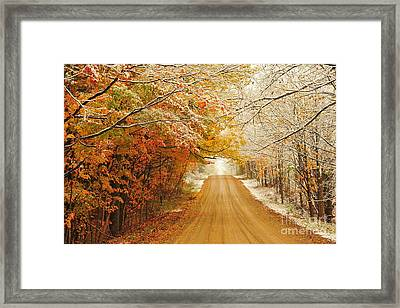 Snow In Autumn 40 Framed Print by Terri Gostola